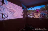 20130208 meantimegallery-97_web
