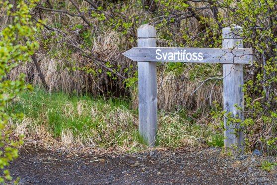 Iceland_20140511_Skaftafell and Svartifoss-60_WEB