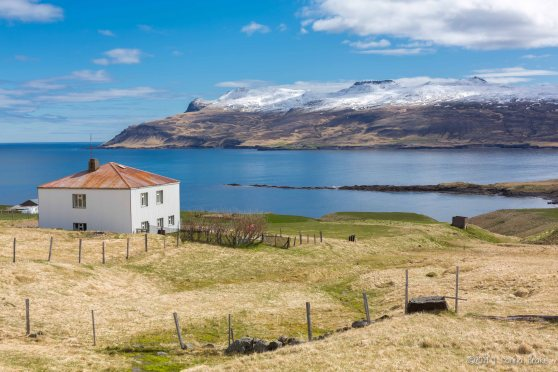 Iceland_20140515_Egilsstadir to Bakkagerdi Puffins-77_WEB