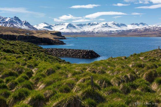 Iceland_20140515_Egilsstadir to Bakkagerdi Puffins-96_WEB
