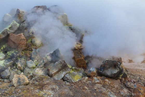 Iceland_20140515_Egilsstadir to Myvatn-11_WEB
