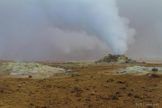 Iceland_20140515_Egilsstadir to Myvatn-9_WEB