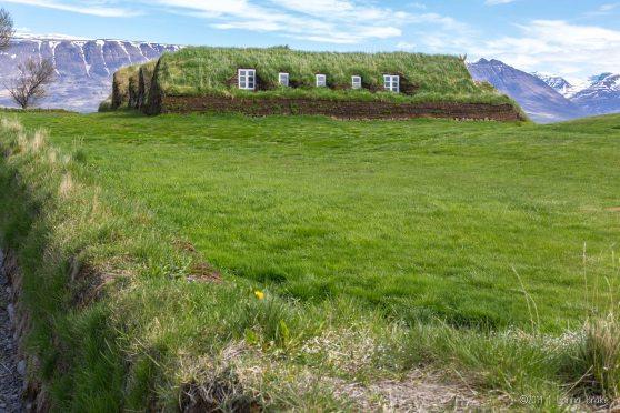 Iceland_20140519-22_Akureyri through Breidavik-55_WEB