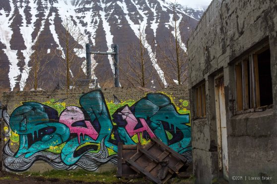 Iceland_20140524-25_Breidavik to Rekjavik-108_WEB