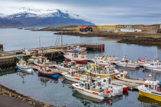 Iceland_20150513_Hofn-to-Breiddalsvik-108_WEB