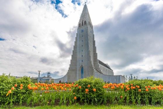Iceland_20140603_Reykjavik-3_WEB